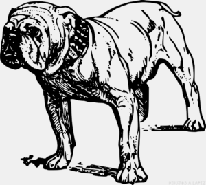 Como dibujar un perro facil para niños