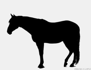Dibujos de caballos para dibujar
