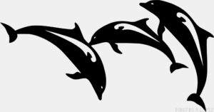 El Delfin dibujo