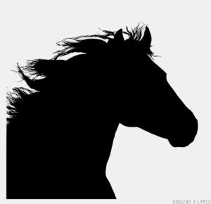Imagenes de caballos para dibujar