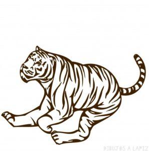 Tigre para calcar