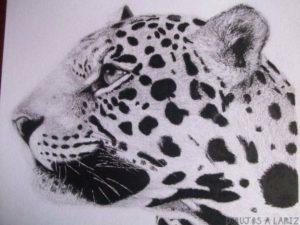 animales pequeños para dibujar