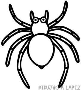 araña caricatura