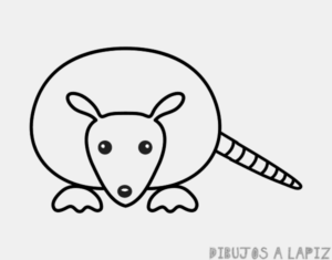 armadillo para dibujar