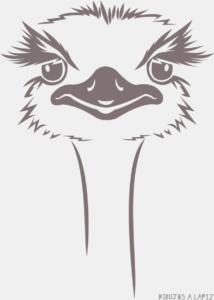 avestruz para niños