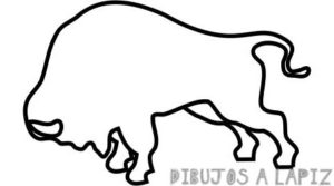 bucking bison outline