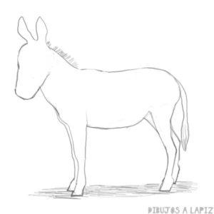 burro dibujo infantil