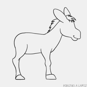 burro imagen