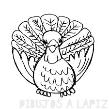 cómo dibujar un pavo