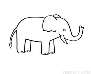 cómo se dibuja un elefante