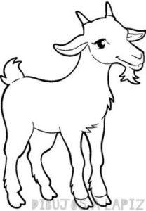 cabra caricatura