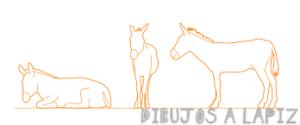 caricatura de burro