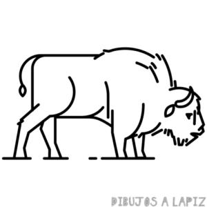 como dibujar un bisonte