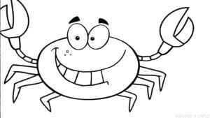 como dibujar un cangrejo para niños