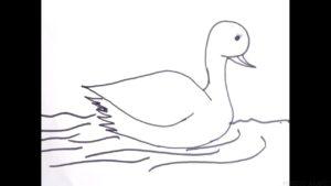 como dibujar un patito