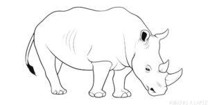 como dibujar un rinoceronte para niños