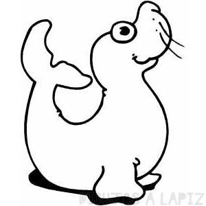 como dibujar una foca facil