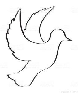 como dibujar una paloma facil