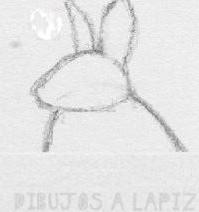 dibujar animales a lapiz