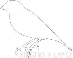 dibujo de un canario para colorear