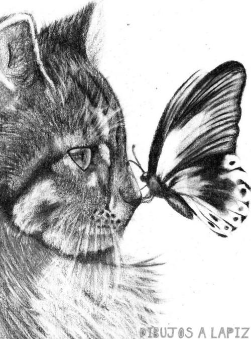 dibujos de animales dibujos de animales