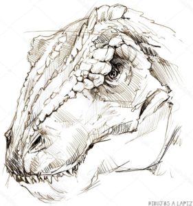 dibujos de animales sencillos