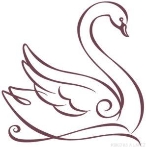 dibujos de cisnes para colorear