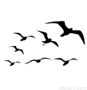 dibujos de gaviotas volando