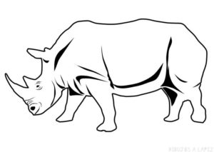 dibujos de rinocerontes animados