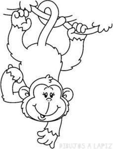 dibujos de simios