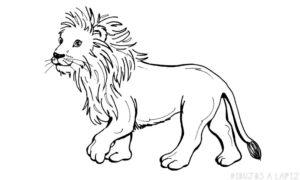 dibujos del rey leon