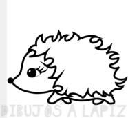 erizo dibujo infantil