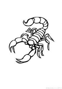 escorpion dibujo