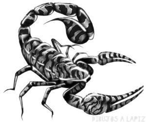 escorpion en 3d