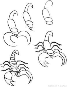 escorpion para dibujar