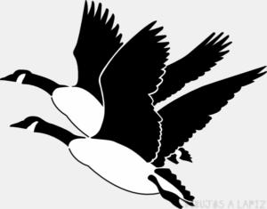 figuras de gansos