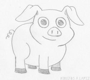 foto cerdo