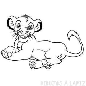 fotografías de leones