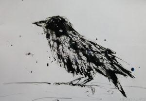 fotos de el cuervo