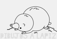 fotos de topos bebes