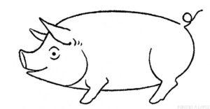 imagen cerdo