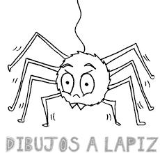 imagenes de arañas faciles