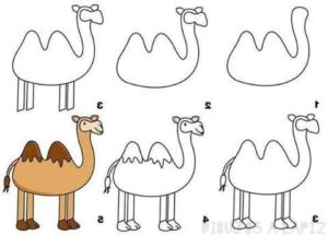 imagenes de camellos para colorear