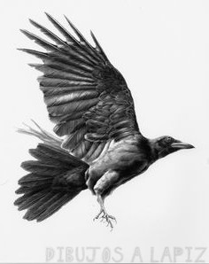 imagenes de cuervos animados
