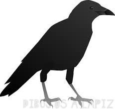imagenes de cuervos volando