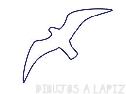 imagenes de gaviotas volando