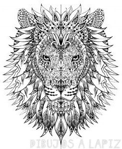 imagenes de leones infantiles