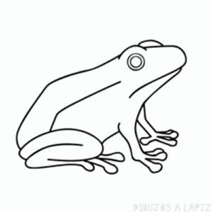 imagenes de ranas animadas