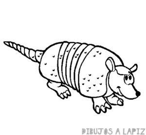 imagenes del armadillo gigante