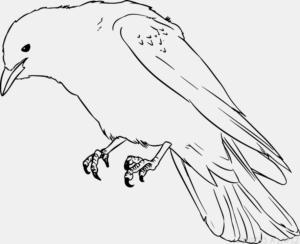 imagenes del cuervo la pelicula
